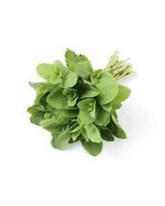 Fresh Mint Herbs - 1 Lb (CASE)