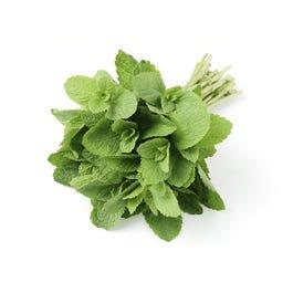 Fresh Mint Herbs - 1 Lb (Piece)
