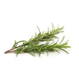 Fresh Rosemary Herb - 1 LB