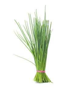 Chives Herb - 1Lb
