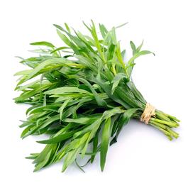 Fresh Tarragon Herb - 1 Lb (Piece)