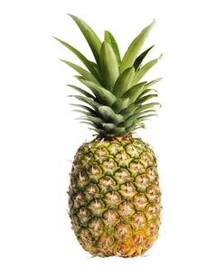 Fresh Pineapple - Cnt (CASE)