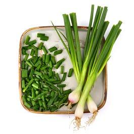 Fresh Green Onions - 48 Cnt