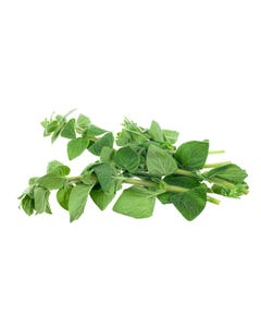 Oregano Herb - 1Lb
