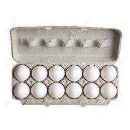 Large Carton Eggs - Dozen